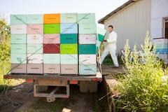 Imker Loading Honeycomb Crates in Vrachtwagen royalty-vrije stock afbeelding