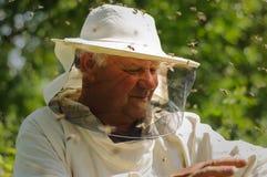 Imker- und Bienenschwarm Lizenzfreies Stockfoto