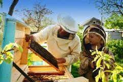 Imkergroßvater und -enkel überprüfen einen Bienenstock von Bienen Lizenzfreie Stockfotos