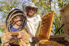 Imkergroßvater und -enkel überprüfen einen Bienenstock von Bienen Stockbild