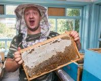 Imkerholding in de honingraten van de handenbij van was in een houten kader stock afbeeldingen