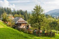 Imkerij in de Oekraïense Karpaten stock fotografie