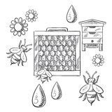 Imkerij en bijenstal geschetste voorwerpen Stock Foto