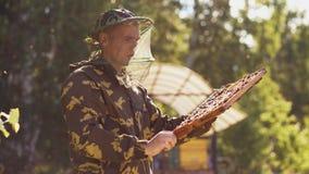 Imkermann, der Holzrahmen überprüft, bevor Honig im Bienenhaus geerntet wird Stockbild