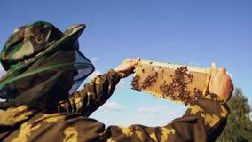 Imkermann, der Holzrahmen überprüft, bevor Honig im Bienenhaus am sonnigen Tag geerntet wird Lizenzfreie Stockfotografie