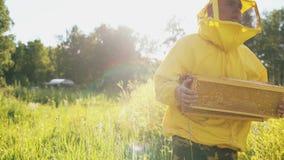 Imkermann mit Holzrahmen gehend auf dem Blütengebiet beim Arbeiten im Bienenhaus Lizenzfreie Stockfotografie
