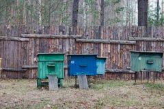 Immagazzini per le api nel cortile della casa Immagine Stock