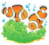 Immagine 1 di tema dei pesci del pagliaccio Immagini Stock