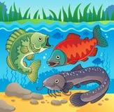 Immagine 3 di tema dei pesci d'acqua dolce Immagini Stock Libere da Diritti
