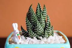 Immagine alta chiusa di bello cactus con coniglio ceramico su colore Immagini Stock Libere da Diritti