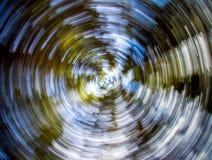 Immagine astratta che mostra gli alberi girati Immagini Stock Libere da Diritti