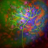 Immagine astratta dell'albero Fotografia Stock Libera da Diritti