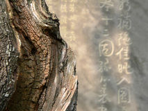Immagine astratta di zen Immagine Stock Libera da Diritti