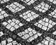 Immagine in bianco e nero della via del ciottolo immagini stock libere da diritti