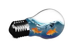 immagine composita 3D della lampadina vuota Immagini Stock