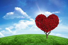 Immagine composita della pianta del cuore di amore Fotografia Stock