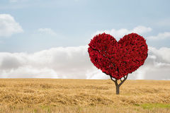 Immagine composita della pianta del cuore di amore Immagine Stock