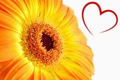 Immagine composita di cuore Fotografie Stock