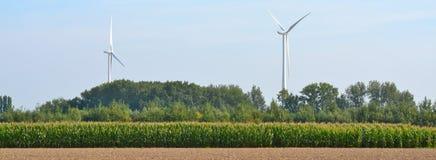 Immagine concettuale di energia Mulino a vento sul campo giallo di estate Fotografia Stock Libera da Diritti