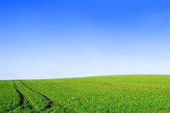 Immagine concettuale verde del cielo blu e del campo. fotografie stock