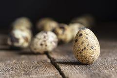 Immagine d'annata lunatica di stile di illuminazione naturale la retro dei quaills eggs Immagine Stock