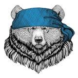 Immagine d'uso della bandana o della bandana o del bandanna del grande animale selvatico selvaggio dell'orso dell'orso grigio per Fotografia Stock