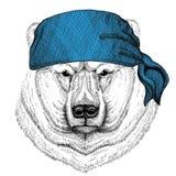 Immagine d'uso della bandana o della bandana o del bandanna dell'animale selvatico dell'orso polare per il pirata Seaman Sailor B Fotografia Stock