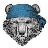 Immagine d'uso della bandana o della bandana o del bandanna dell'animale selvatico russo dell'orso dell'orso bruno per il pirata  Fotografie Stock