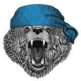 Immagine d'uso della bandana o della bandana o del bandanna dell'animale selvatico russo dell'orso dell'orso bruno per il pirata  Fotografie Stock Libere da Diritti
