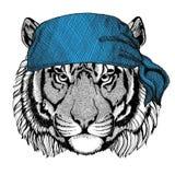 Immagine d'uso della bandana o della bandana o del bandanna dell'animale selvatico selvaggio della tigre per il pirata Seaman Sai Immagine Stock
