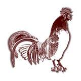 Immagine decorativa di vettore di un gallo Fotografia Stock Libera da Diritti