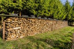 Immagine dei mucchi di legno con un tetto e le gomme della stagnola sulla cima in un prato immagine stock libera da diritti