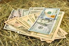 Immagine dei soldi dei dollari sul primo piano del fieno Fotografie Stock Libere da Diritti