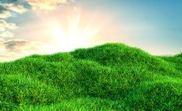 Immagine del campo di erba verde e del cielo blu luminoso Fotografia Stock