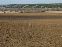 Immagine del campo in molla in anticipo Fotografie Stock Libere da Diritti
