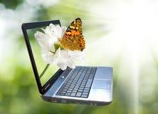Immagine del computer portatile su un fondo verde Immagini Stock