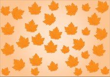 Immagine del contesto di Bacground con il vettore delle foglie di autunno fotografie stock libere da diritti