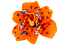 Immagine del fiore del giglio di tigre fatta da lana Immagini Stock