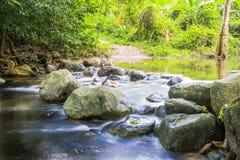 Immagine del fondo degli alberi e degli scorrimenti dell'acqua tramite il percorso roccioso o Fotografia Stock Libera da Diritti