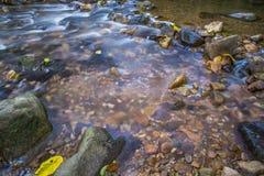 Immagine del fondo degli scorrimenti dell'acqua tramite il percorso roccioso di una corrente Immagine Stock Libera da Diritti