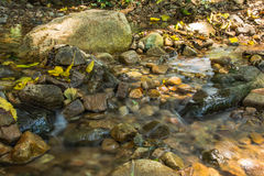 Immagine del fondo degli scorrimenti dell'acqua tramite il percorso roccioso di una corrente Fotografia Stock Libera da Diritti
