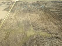immagine del fuco la vista aerea dell'agricoltura astratta sistema le strutture Fotografie Stock
