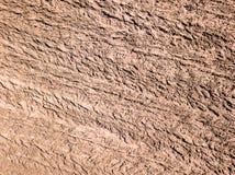 immagine del fuco la vista aerea dell'agricoltura astratta sistema le strutture Fotografia Stock Libera da Diritti