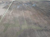 immagine del fuco la vista aerea dell'agricoltura astratta sistema le strutture Immagine Stock Libera da Diritti