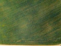 immagine del fuco vista aerea di zona rurale con i campi e le foreste i fotografie stock