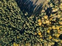 immagine del fuco vista aerea di zona rurale con i campi e le foreste i immagini stock