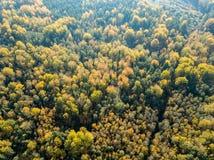 immagine del fuco vista aerea di zona rurale con i campi e le foreste i immagini stock libere da diritti