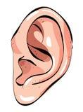 Immagine del fumetto dell'orecchio umano royalty illustrazione gratis