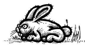 Immagine del fumetto di coniglio royalty illustrazione gratis