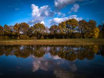 Immagine del lago autumn nei Paesi Bassi Immagini Stock Libere da Diritti